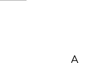 Logo Liuteria Russo - Liutaio Torino